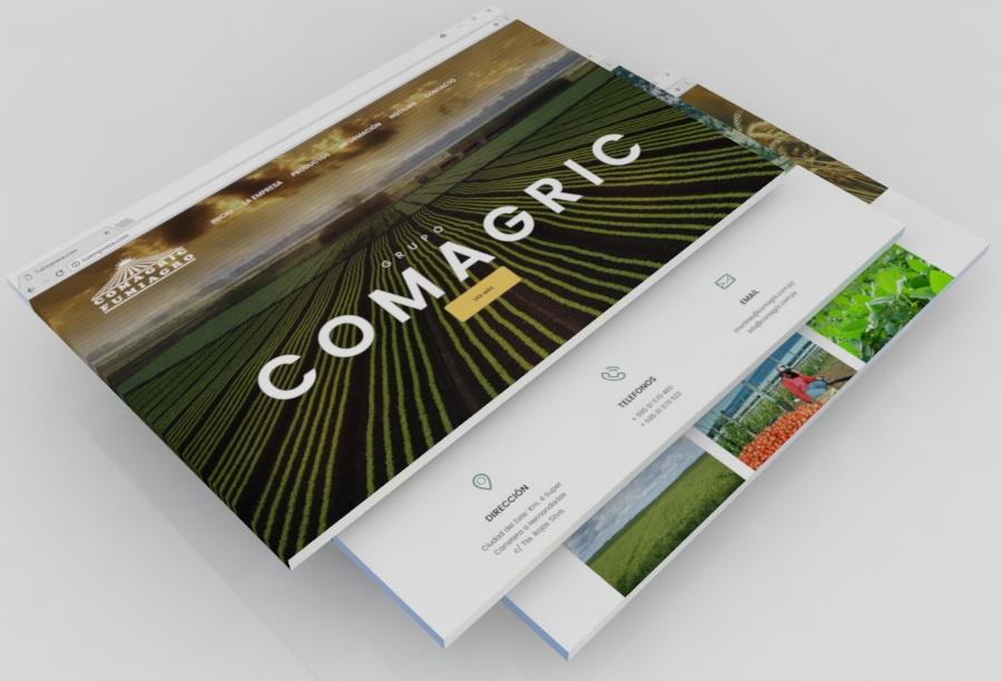 Diseño Web Paraguay